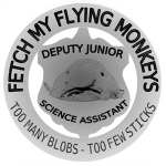 Deputy Junior Science Assistant